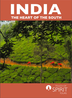 the-heart-of-south